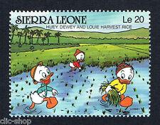 WALT DISNEY 1 FRANCOBOLLO SIERRA LEONE HUEY DEWEY AND LOUIE HARVEST RICE nuovo