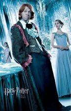 Harry Potter movie poster : (f) Rupert Grint poster - Goblet Of Fire