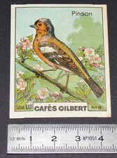 CHROMO 1936 CAFES GILBERT OISEAUX BIRDS PINSON