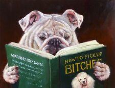 Casanova Lucia Heffernan Animal Humor Funny Dog Novelty Print Poster 16x20