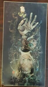 """~ Endre Szasz The Rose Art Print Poster 11x21"""" Double Sided With Write Up Rare ~"""