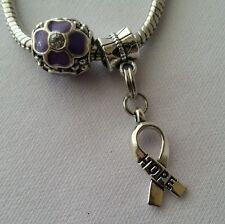 Flower Purple Crystal Glass Bead Silver Hope Dangle Charm for European Bracelet