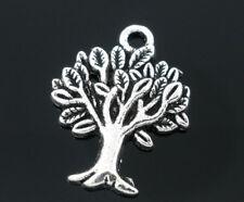 Tree Willow Charms Tibetan Silver 22x17mm x 10 Charms