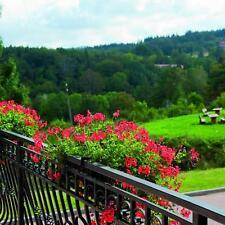 Polen Riesengebirge Kur Urlaub mit Wellness 3 Sterne Hotel Gutschein 5 Tage
