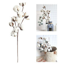 10 Heads Natural Dried Cotton Flower Artificial Cotton Stem Floral Branch HOT