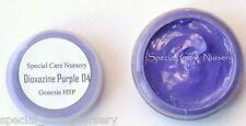 Genesis heat set paint 2g/ml Dioxazine Purple 04 - Buy any 5 pots get 6th FREE!
