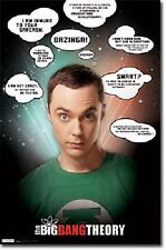 THE BIG BANG THEORY TV SHOW SHELDON QUOTES NEW POSTER 22x34 FAST FREE SHIPPING