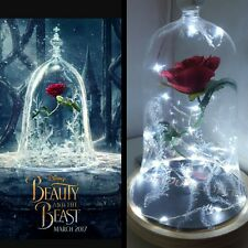 Beauty and the Beast Rose Light Bell Jar Lamp Light Night