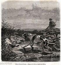 Cacciatore, Cane da Caccia e Civetta Ferita. Stampa Antica + Passepartout. 1862
