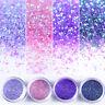10ml Nail Art Glitter Sequins Powder Dust Purple Pink Paillettes 3D Nail Decor