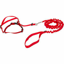 PetSafe COME WITH ME KITTY Cat Harness and Bungee Leash Red Medium