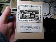 "VINT PHOTO OF OMNIBUS COLLEGE ""FARMING IN ALABAMA"" BLACK FARMER HORSE & PLOW"