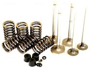VALVE TRAIN KIT FOR FORD 2000 3000 4000 2600 3600 4600 TRACTORS