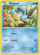 Panpour Common Pokemon Card BW2 Emerging Powers 22/98