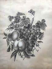 AMALIE HANSEN STILLLEBEN MIT TRAUBEN UND SCHMETTERLING UM 1870 43 x 36 CM