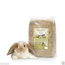 Guinea Pig Hay Small Animal Food & Treats