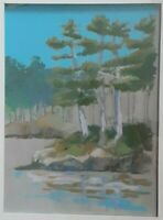 """Original """"After Hiking in Maine"""" pastel 9X11"""