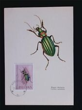 POLEN MK 1963 INSEKTEN KÄFER INSECTS BEETLE MAXIMUMKARTE MAXIMUM CARD MC c5387