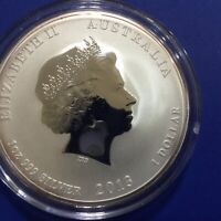 2013 Year of the Snake 1 oz silver Perth Mint