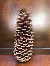 "11""-12"" Giant Sugar Pine Cones California Free Shipping"
