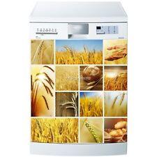 Magnet lave vaisselle Blé 60x60cm réf 603 603
