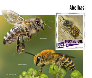 Mozambique Bees Stamps 2020 MNH Mason Honey Bee Insects Fauna 1v S/S