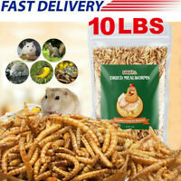 10 LBS Bulk Dried Mealworms for Wild Birds Food Blue Bird Chickens Hen Treats
