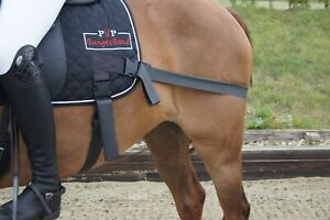 BungeeBand Saddlepad, Equine Band, Core Trainer, Equi Trainer, Equine Core Pad