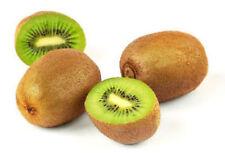 Kiwi exotic fruit seed rare edible good to eat 50 seeds