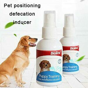 Dog Spray Inducer Dog Toilet Pee Poop Training Products Puppy
