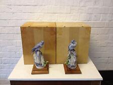 Vtg Royal Worcester Dorothy Doughty Pair Bird Figurines Mountain Bluebirds Boxes