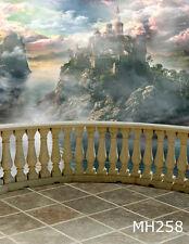 Castle Balcony Scenic Vinyl Studio Backdrop Photography Photo Background 10x20ft