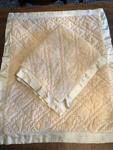 Pair Of Pottery Barn Velvet And Silk Standard Shams