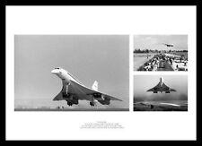 Photograph Concorde Aeronautica