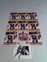 ****Darryl Sittler / Ryan Sittler****  Lot of 31 cards.....7 DIFFERENT / Hockey
