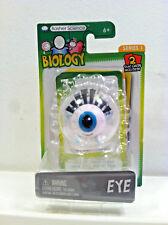 Basher Science Biology Eye Figure.