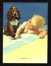 "Vintage 1940's ""Playtime Pals"" Cute Little Baby Cocker Spaniel Art Print"