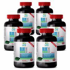 Acai Berry Antioxidant Trans 1200 - Klamath Blue Green Algae  500mg (6 Bottle )