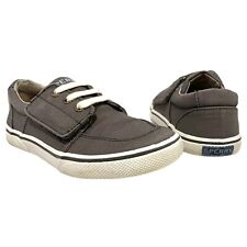 Boys Sperry | Ollie Jr. Shoes in Truffle- size 12 M