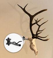 """The """"Bull Bracket"""" European Elk Skull Hanger, Euro, Taxidermy Euro Mount Hooker"""