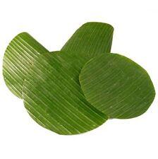 Bananenblätter rund geschnitten ø 20 cm - 30 cm frisch ca.50 Stück