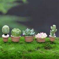 7Pcs Tiny Cactus Miniature Succulent Plants Dollhouse Garden Accessory Decor