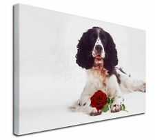 More details for springer spaniel with red rose x-large 30