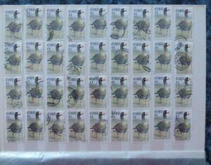 Ireland 1997/1998 Bird Definitives  £1. Greenland White-fronted Goose Bulk Lot