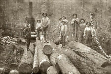 Oregon loggers steam donkey 1919 photo OR logging CHOICE 5x7 or request 8x10 or