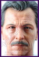 1:6 scale HOT TOYS ACGHK 2012 EXCLUSIVE BATMAN DARK KNIGHT JIM GORDON HEAD