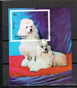 Sharjah Fauna Pets Dogs Souvenir Sheet 1972
