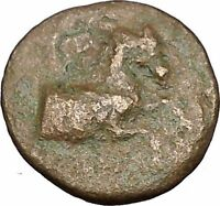Kyme in Aeolis 350BC Horse & Vase Genuine Authentic Ancient Greek Coin  i51839
