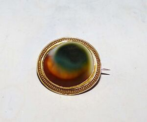 Rare Antique 1880's Victorian Solid 18Kt Gold Catseye Operculum Oval Brooch Pin