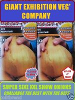 GIANT ONION SEED - EXHIBITION ONION QUALITY - ESTABLISHED VARIETY LIMITED STOCK